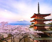 日本春天:TAKASHI