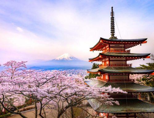 "CP +""美丽的日本""NiSi摄影大赛回顾"