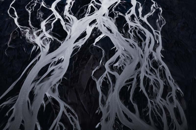 无数条汇集的溪流,就像盘根错节的树根。