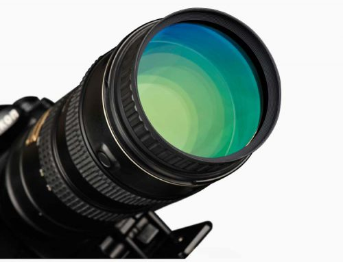 NiSi 近摄镜——长焦镜头变微距,闯进神秘微世界